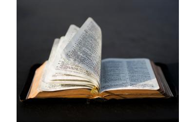 Bible Translation and the Dignity, and Beauty, of Languages